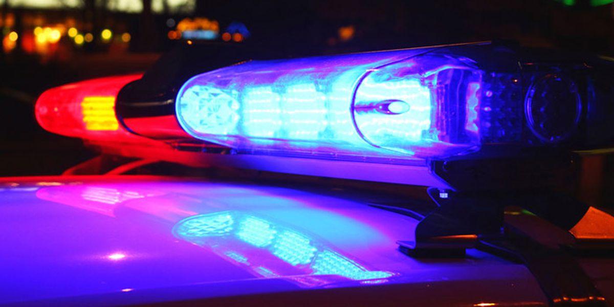 Police: Fugitive shot dead during arrest attempt in Virginia