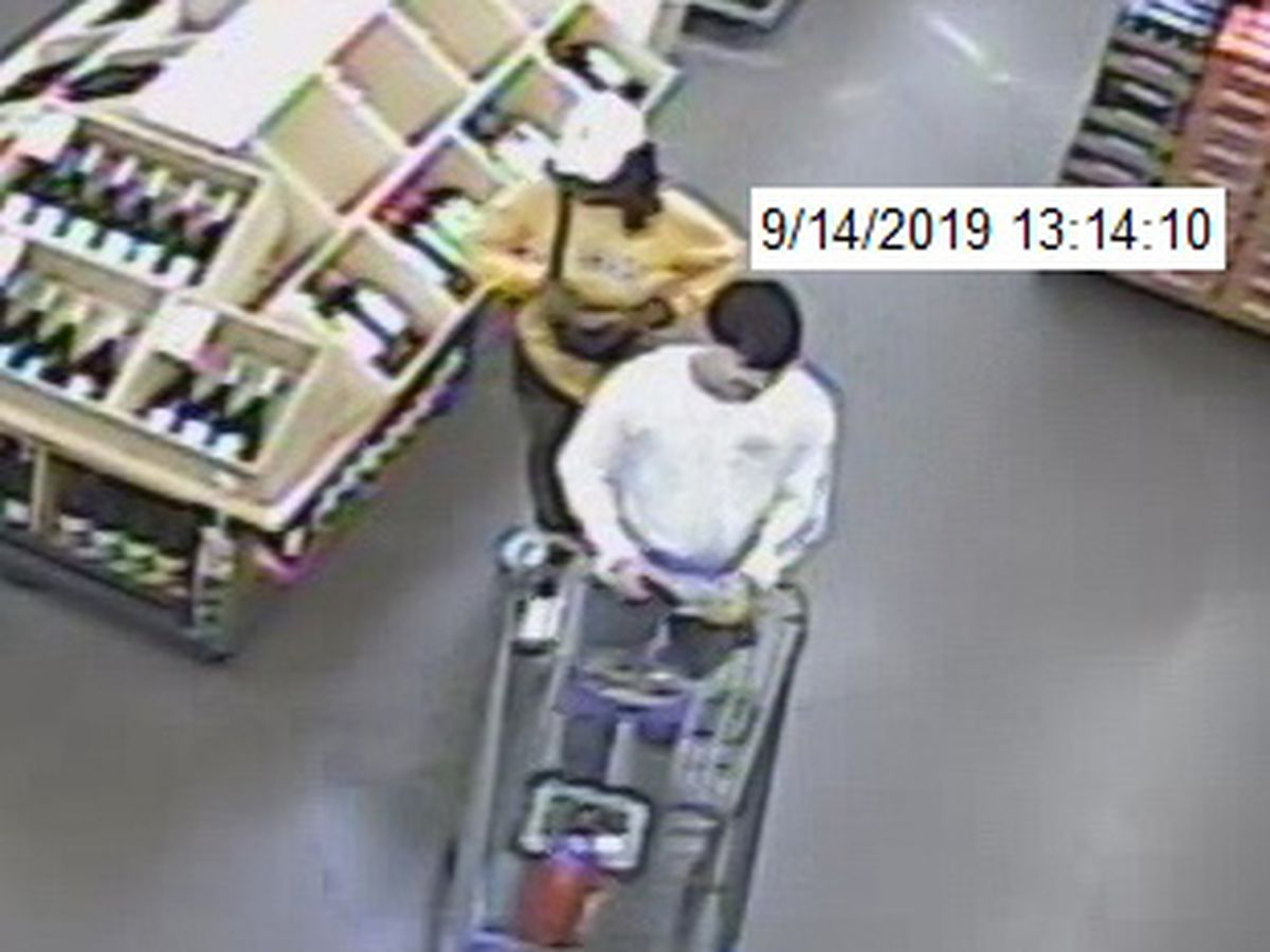 Police searching for 2 people caught on camera using stolen credit cards