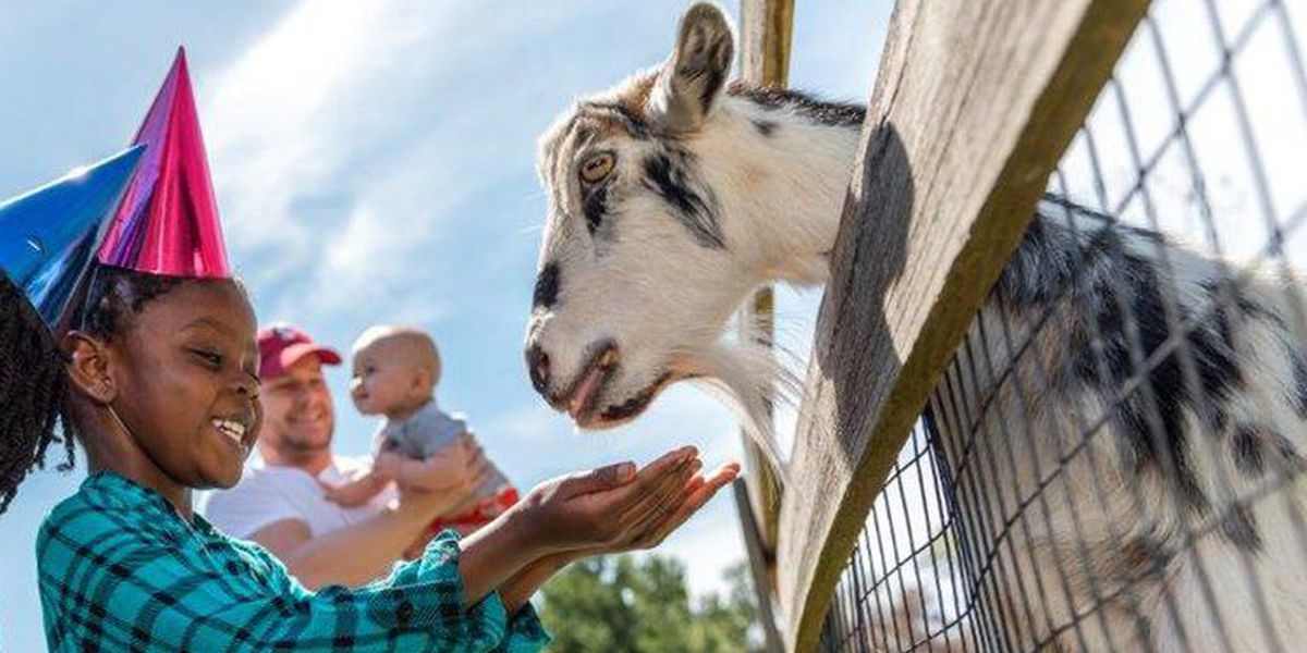 Maymont Farm to re-open this month