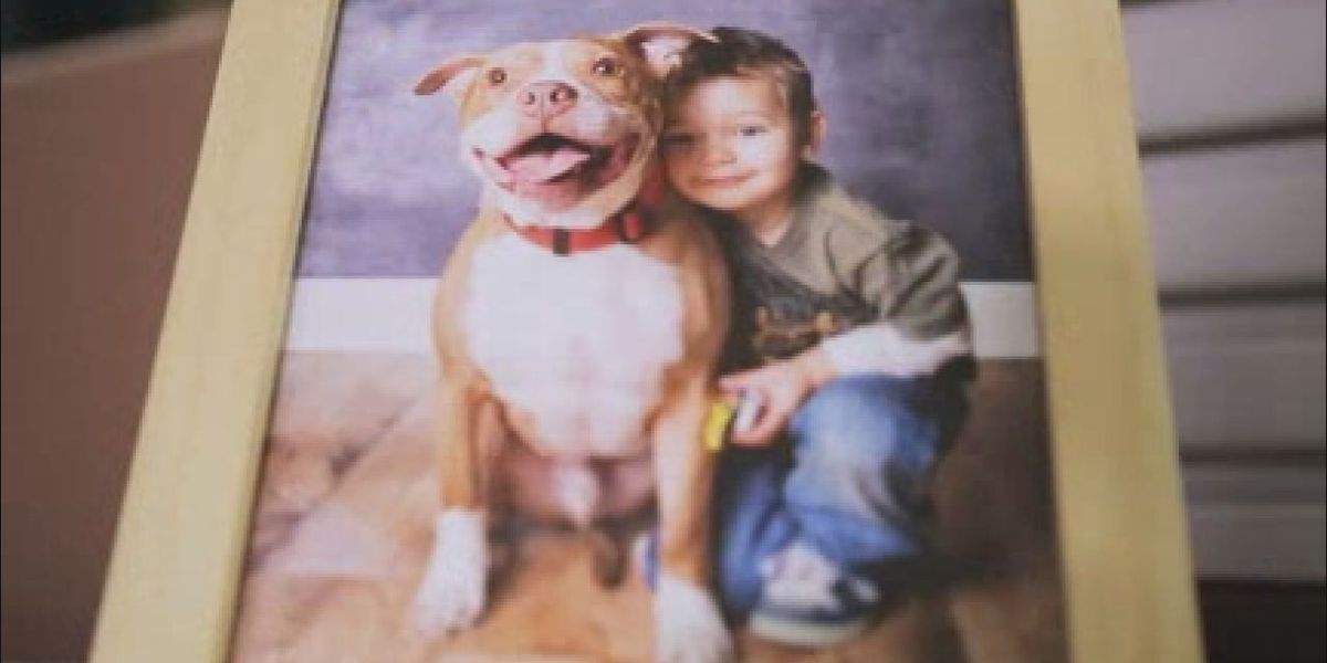 Some companies offer pet bereavement time