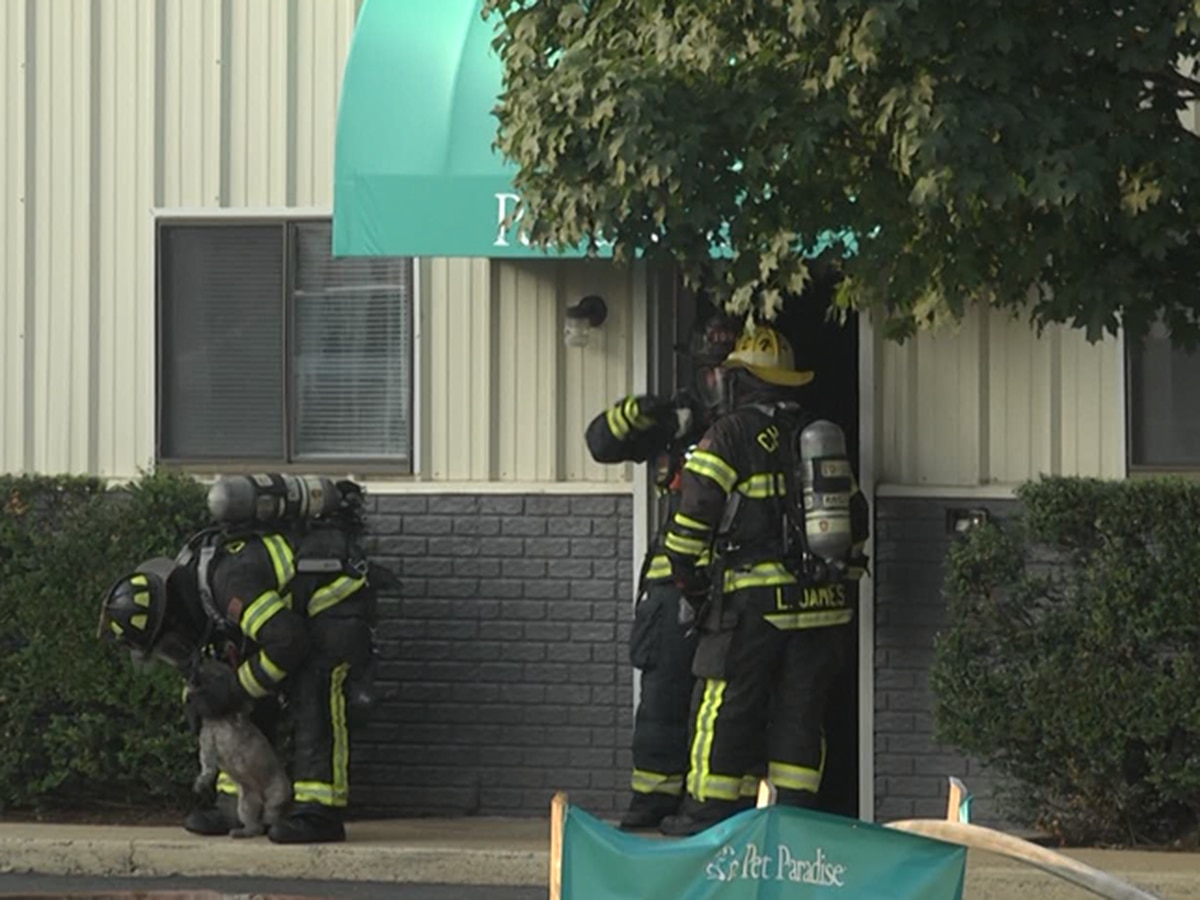 More than 70 pets rescued from fire at Va. pet resort