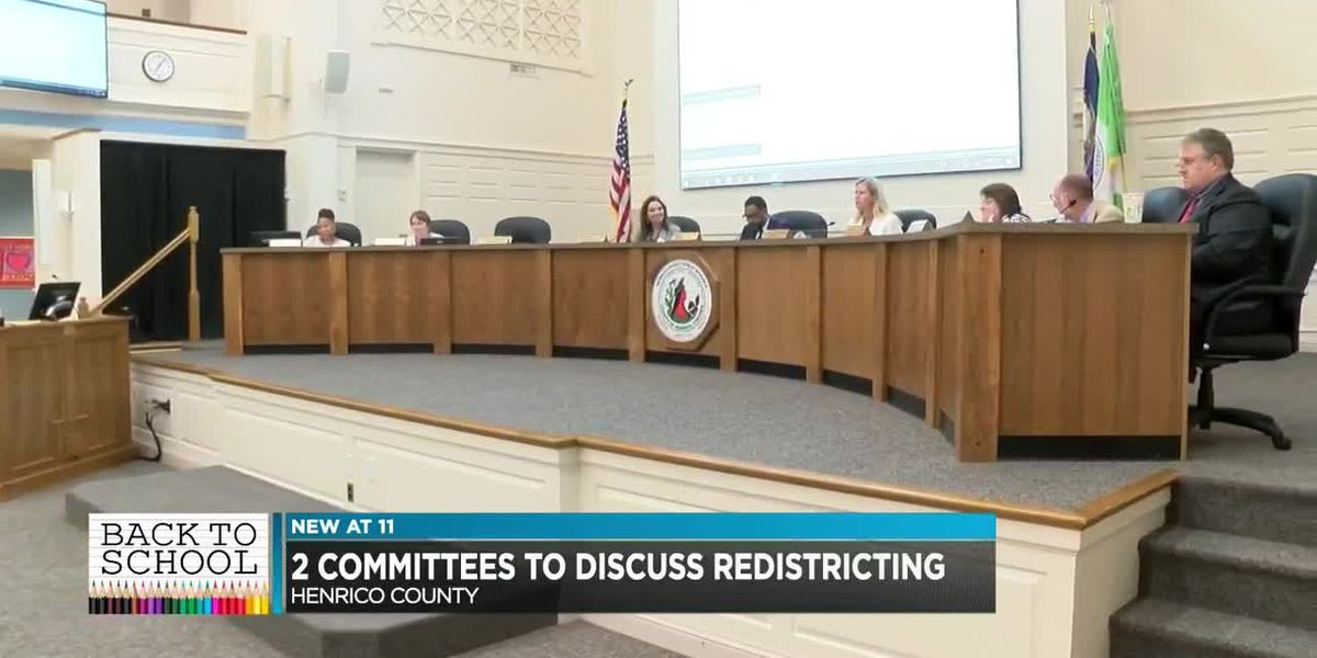 Committees named to oversee Henrico redistricting