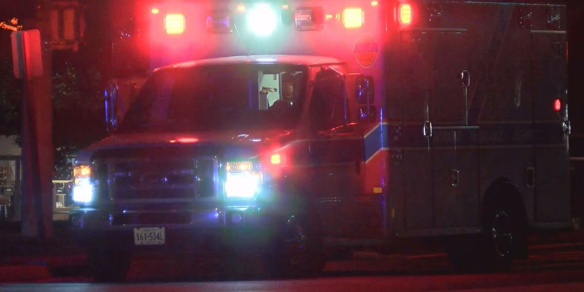 Woman hit at bus stop on Forest Hill Avenue; driver flees