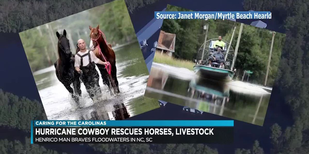 'Hurricane Cowboy' from Henrico wrangles in horses, livestock stranded in high waters left from Flor