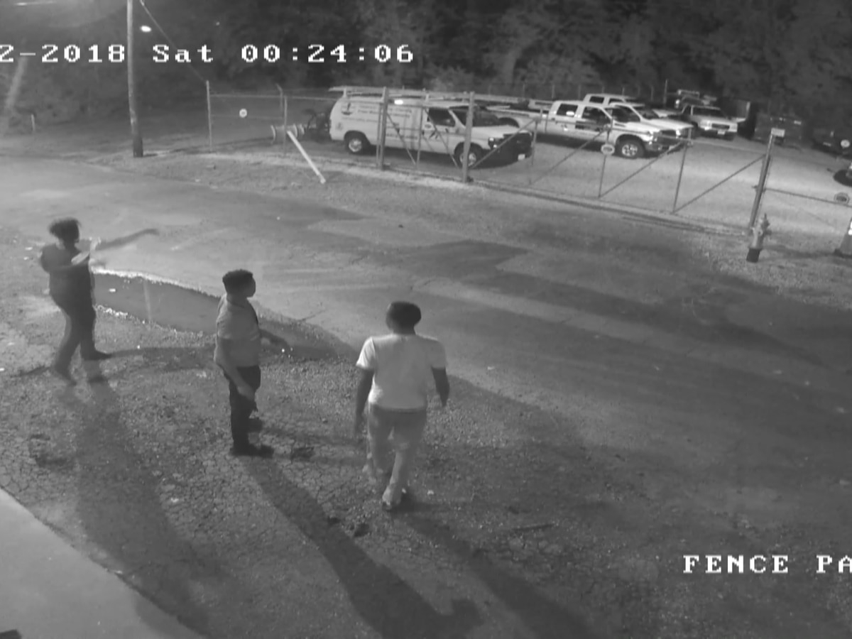 Caught on camera: 3 people hurling rocks leaves $6K in damages