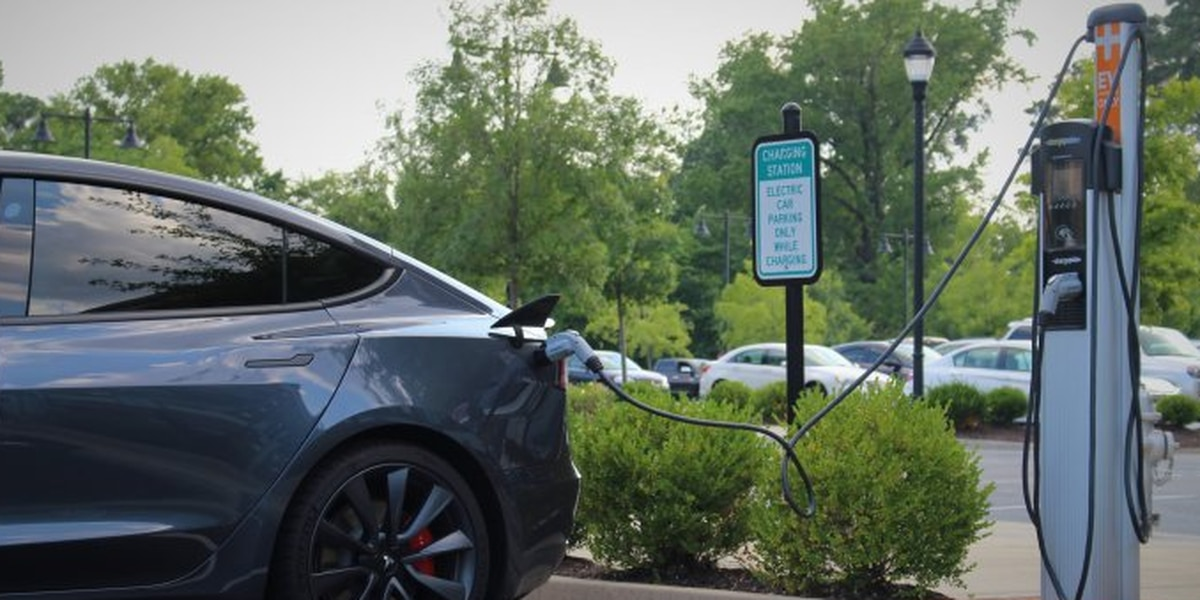 Electric vehicle use is rising. But who should be at wheel during the transition?