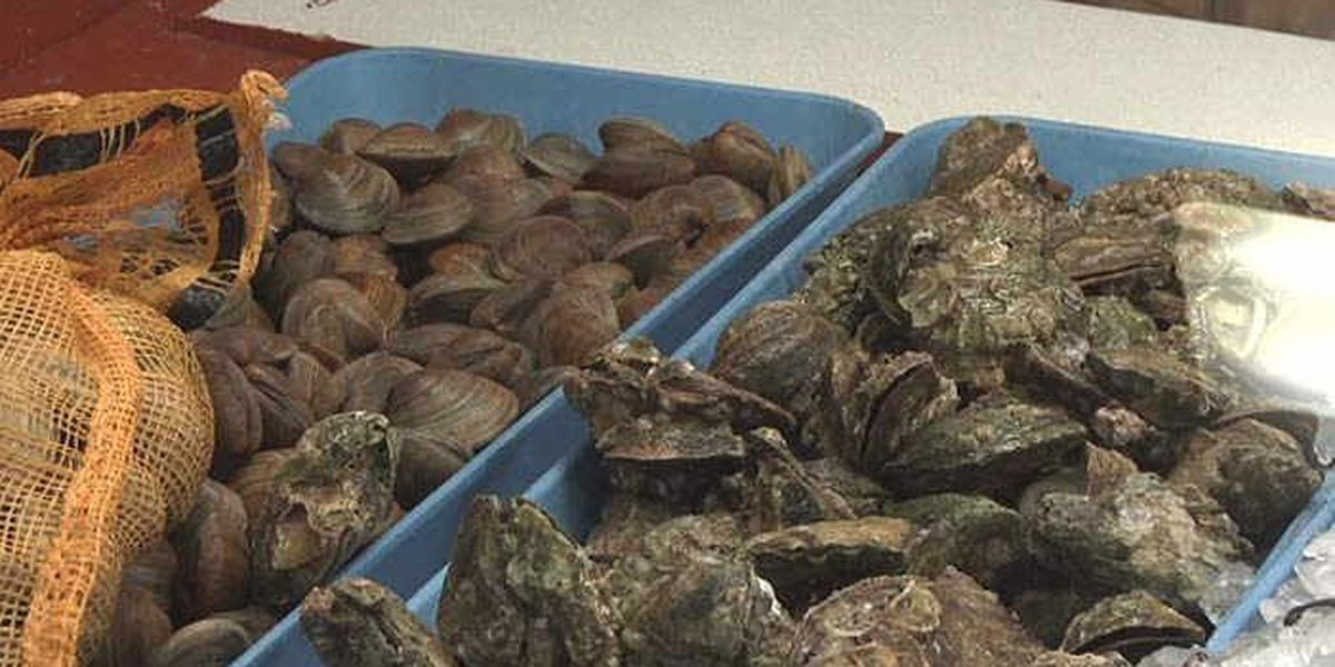 Health department closes Parrot Island to shellfish harvesting
