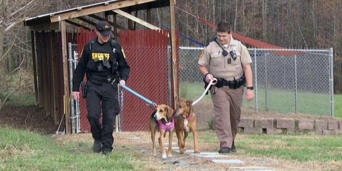 Louisa County Sheriff's Office teams up with area animal shelter this winter