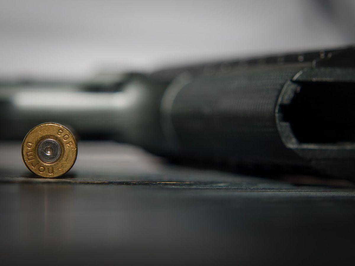 Senate rejects gun control bill amendments