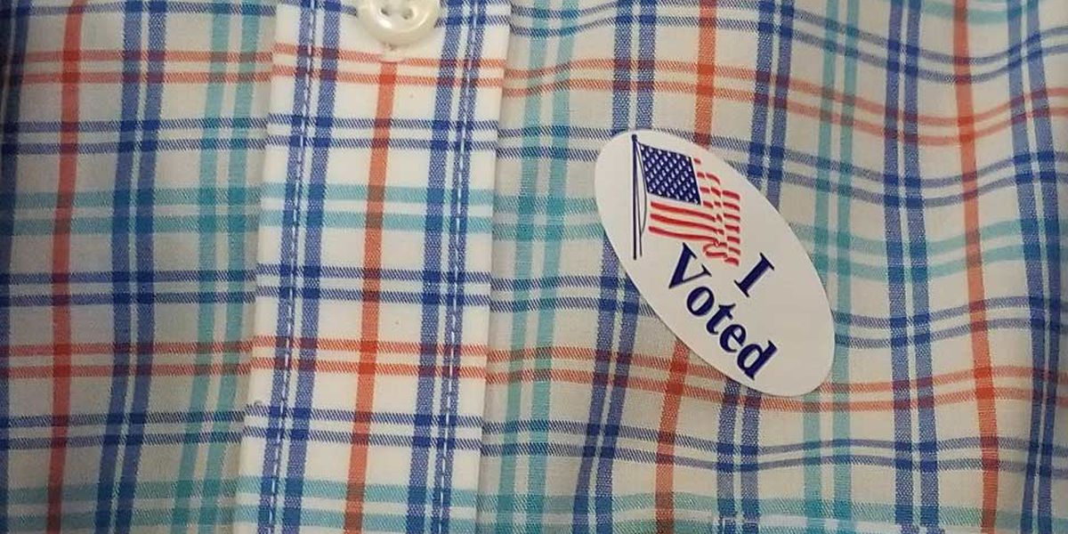 Some Democratic candidates file lawsuit against Virginia Department of Elections