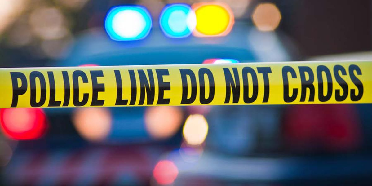 Two toddlers, brothers ages 1 and 3, found dead in a hot car in Shelby Co.