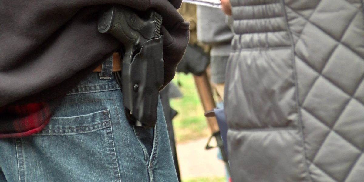House OKs bill to ease rule on concealed gun permits