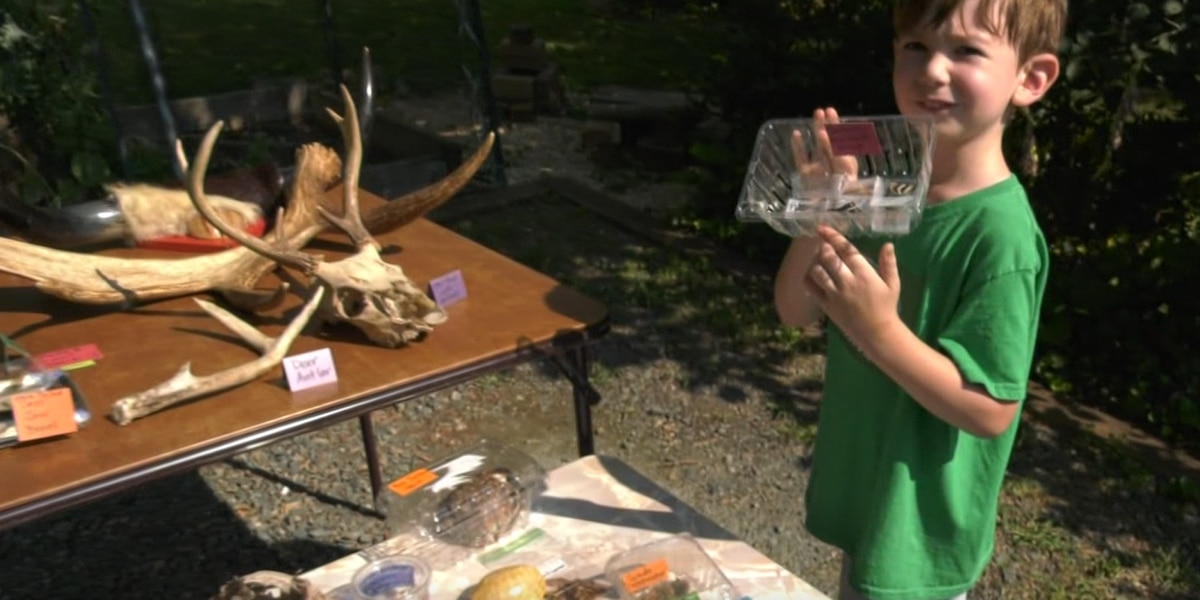 Charlottesville 5-year-old gains popularity, spreads joy by creating outdoor museum