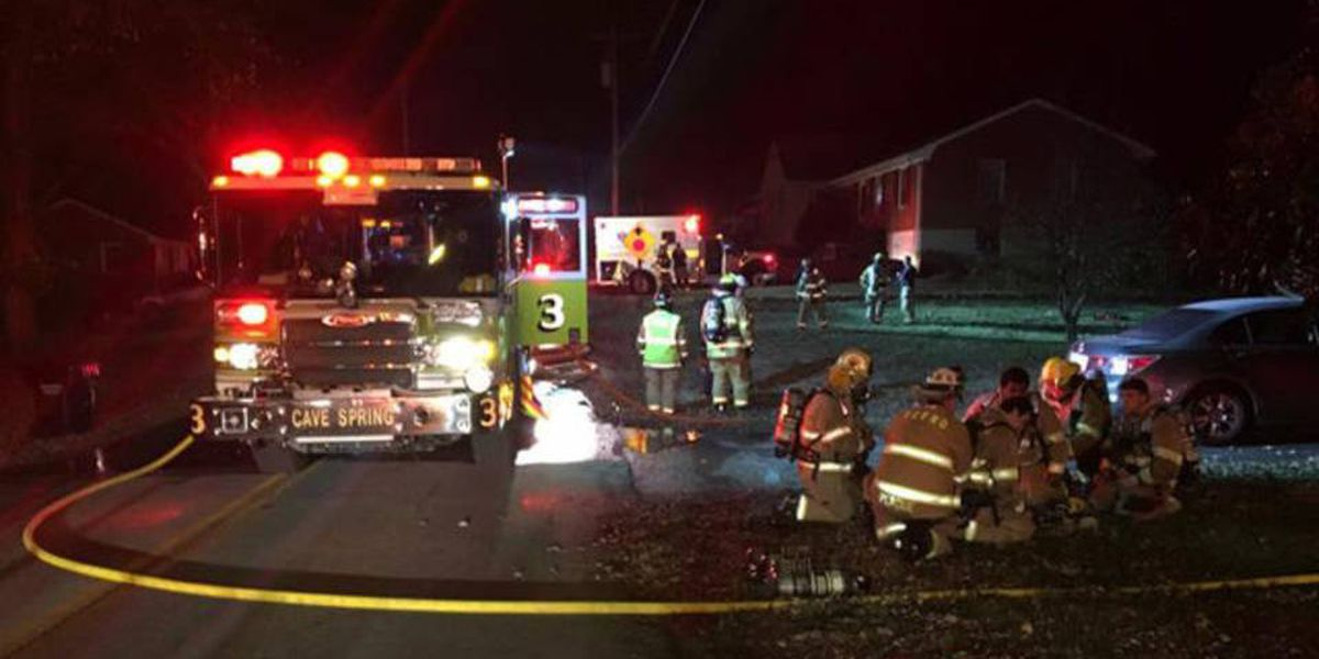 Smoke alarms, pets save Virginia family from fire