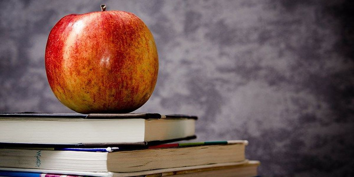 Louisa Schools looking to hire teachers, fill other positions