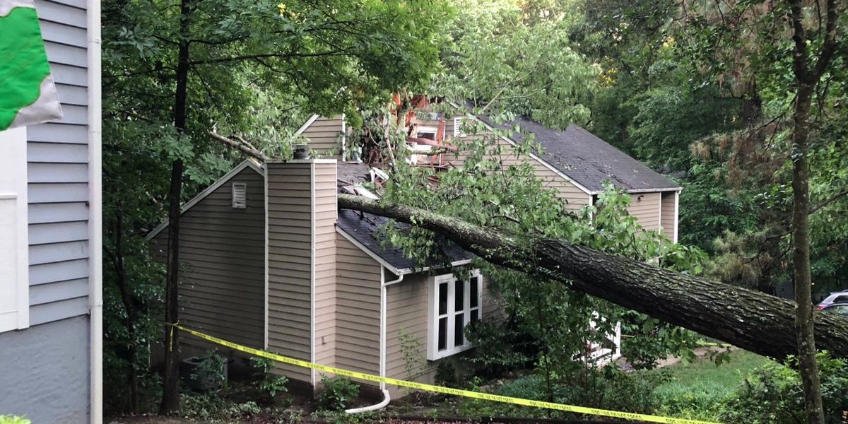 Neighbor's tree crashes into home; homeowner foots the bill