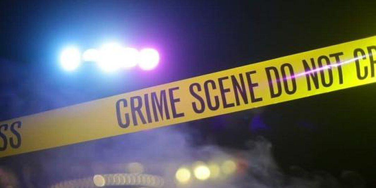 Petersburg Police investigate early morning shooting
