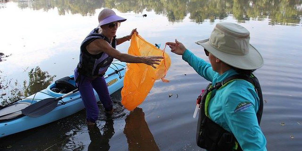 More than 700 volunteers clean up James River