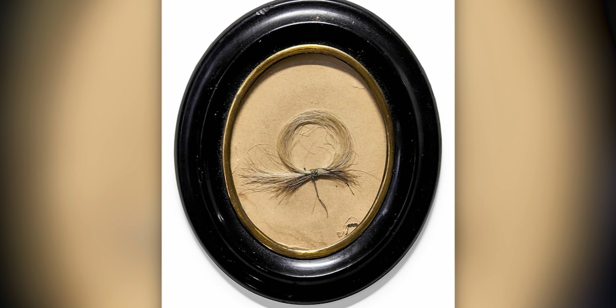 Lock of Beethoven's hair up for auction