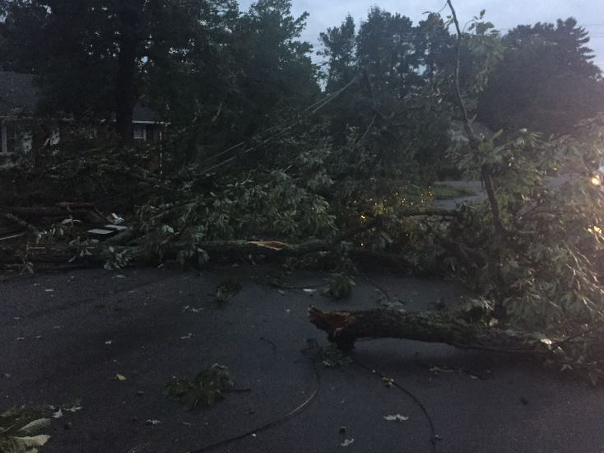 Henrico neighborhood picks up the pieces after storms