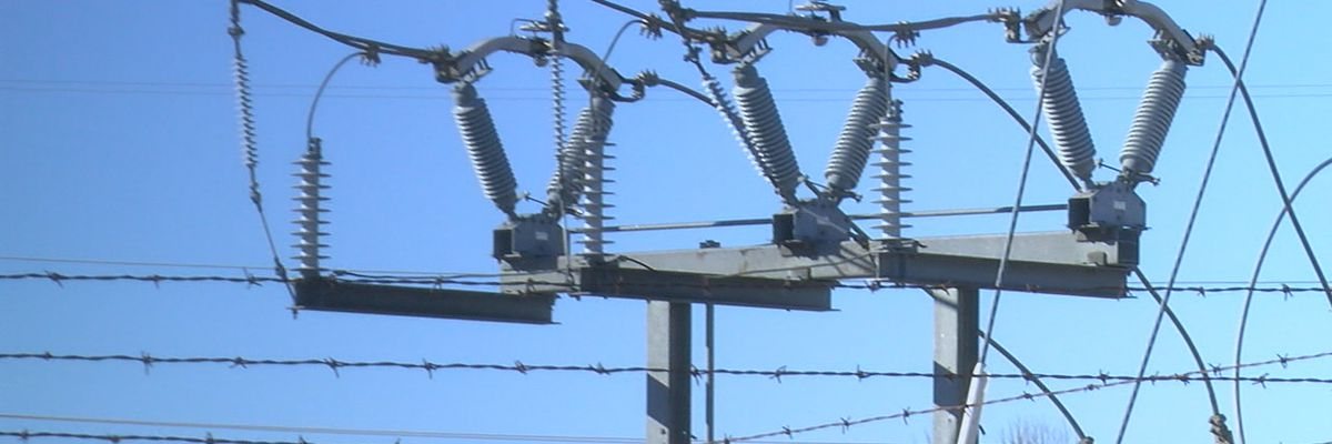 Southside Electric Cooperative restores power to 98% of members