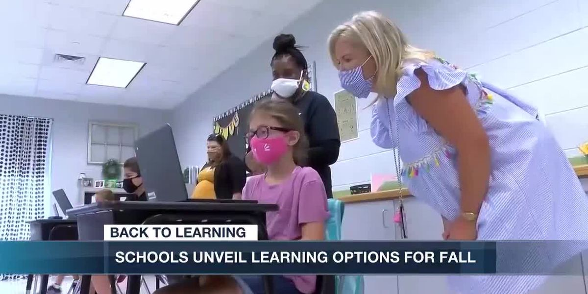 Schools unveil learning option for fall