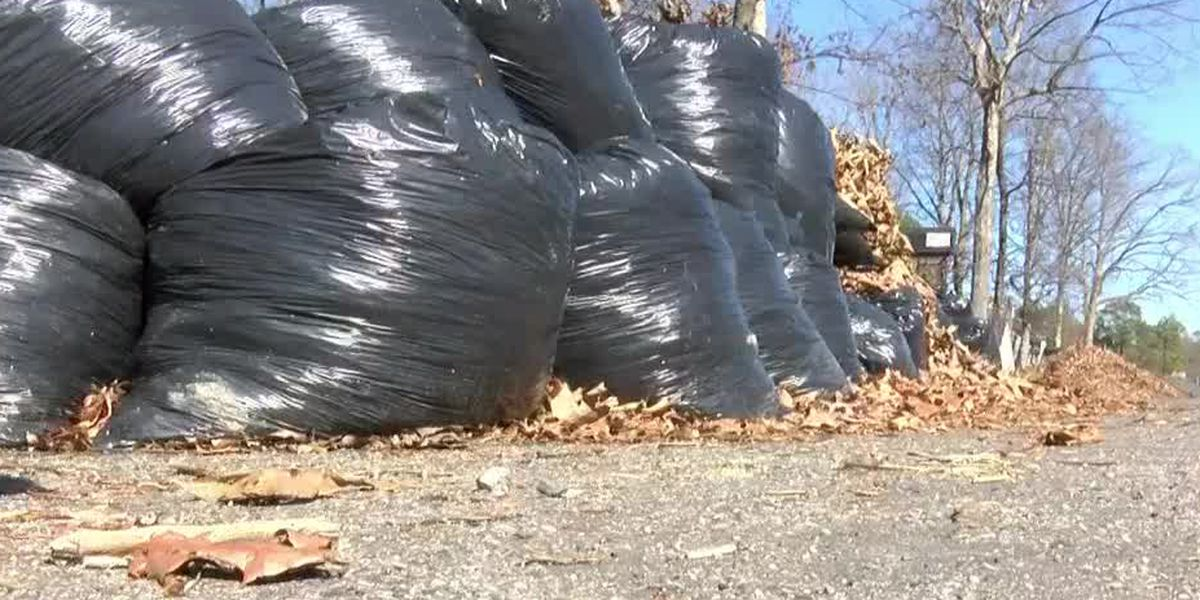 Leaf collection program begins in Richmond