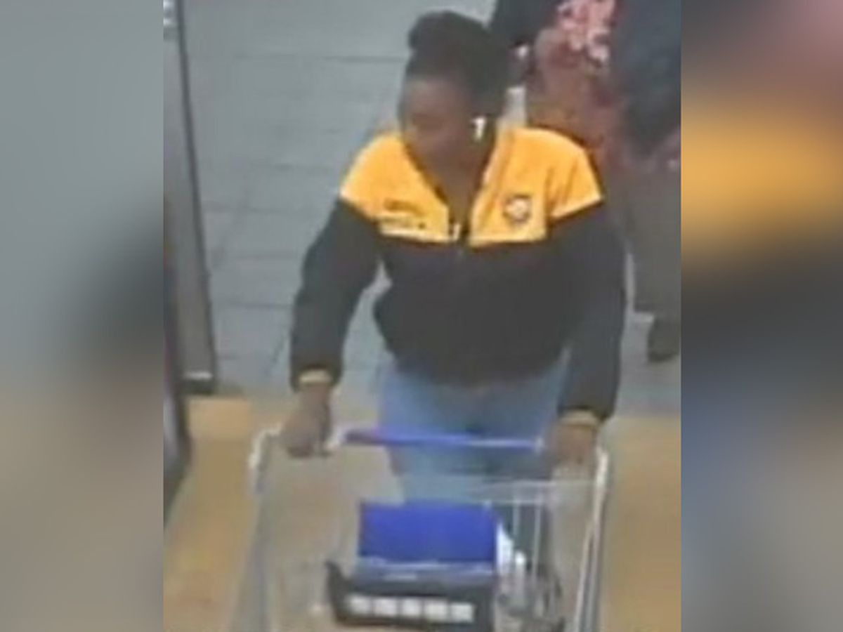 Police search for woman who tried using stolen credit card