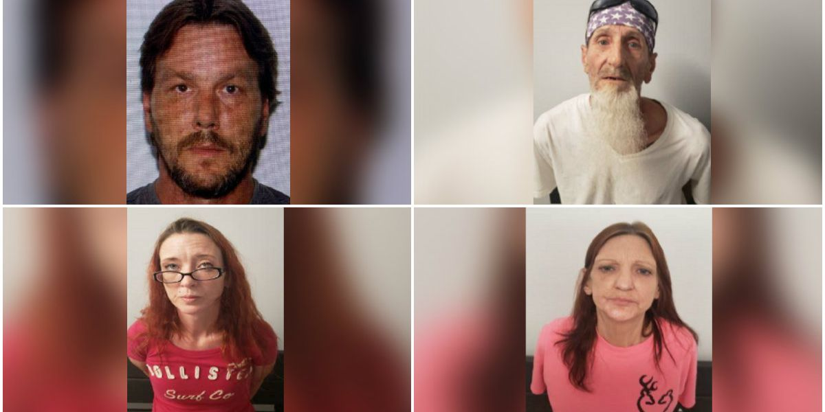 Four Hopewell adults face over a dozen sex abuse, neglect charges against minors