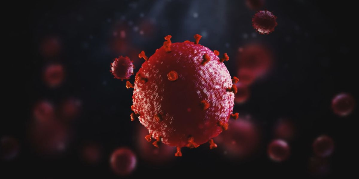 Two ER doctors in US in 'critical condition' with coronavirus