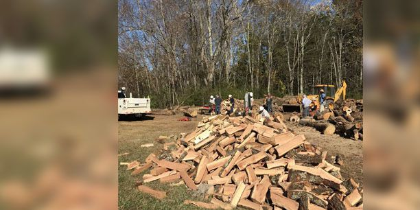 Dominion employees turn damaged trees into firewood for local families