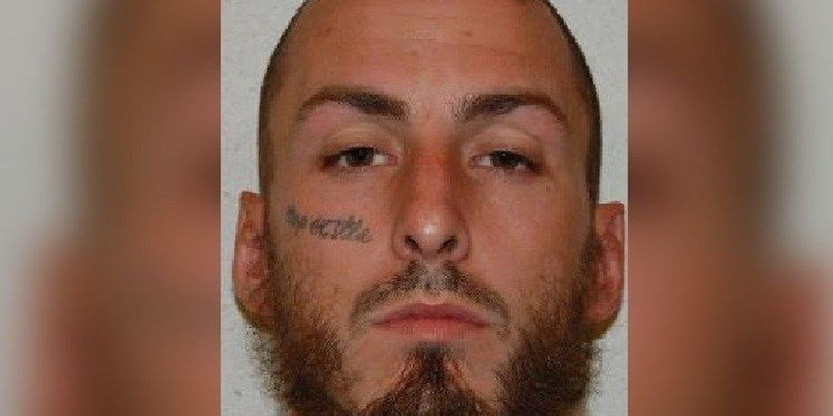 Alleged ISIS supporter from Richmond guilty of firearms charge