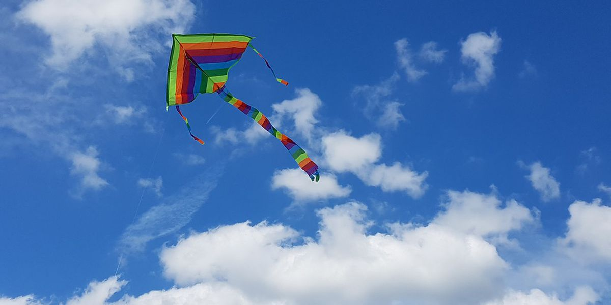 Fly a kite and go on a virtual vacation