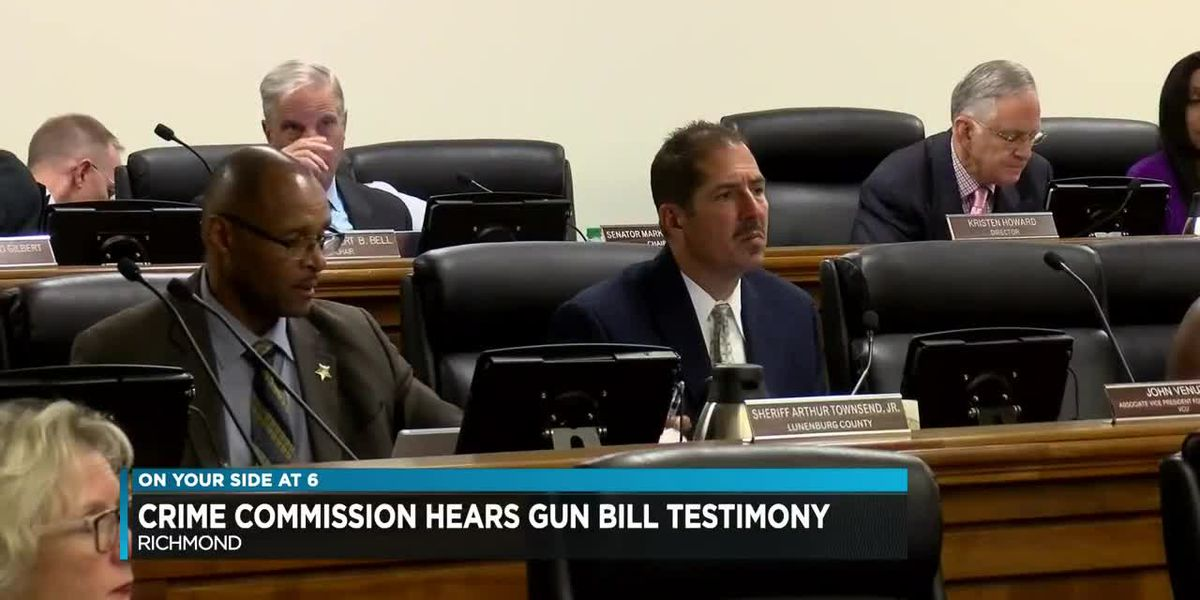 Crime Commission hears gun bill testimony
