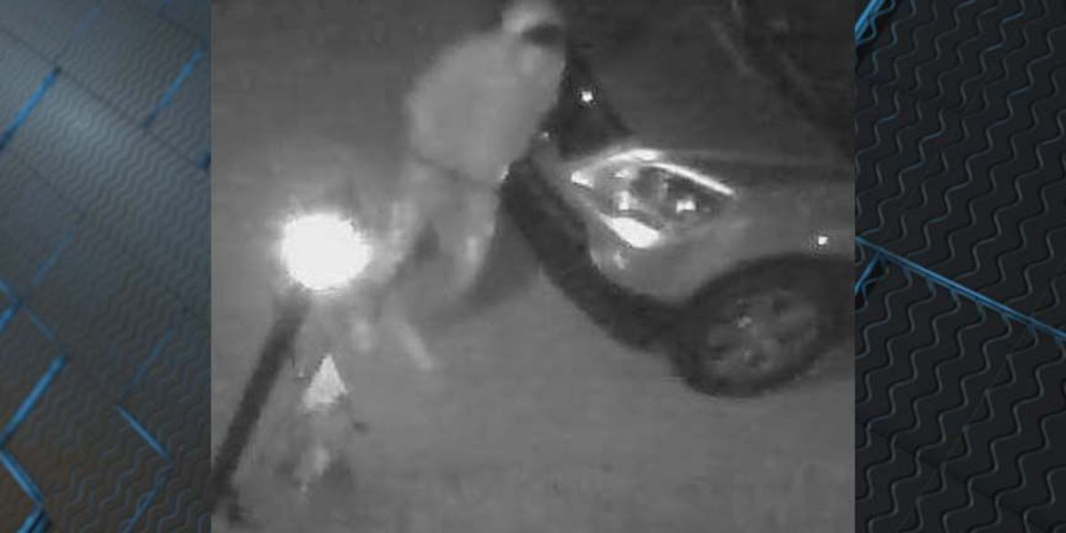 Car thief caught on camera in Chesterfield community