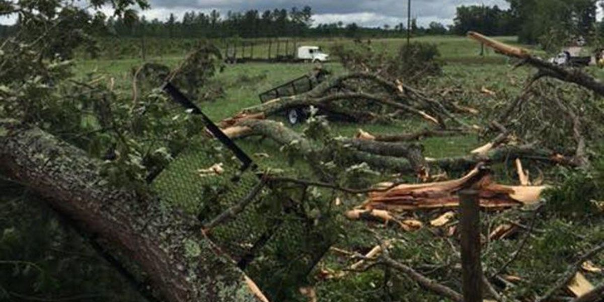 National Weather Service confirms 8th tornado from May 5 storms