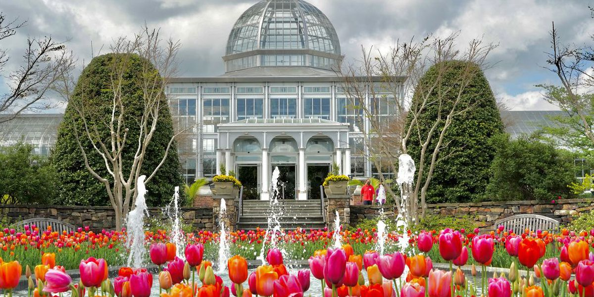 Lewis Ginter Botanical Garden's 'A Million Blooms' in full swing