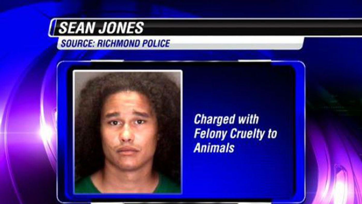 Richmond man facing animal cruelty charges for death of cat