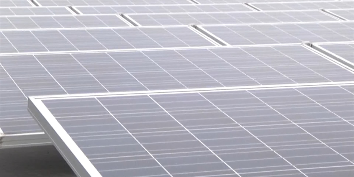 Charlottesville nonprofit launches campaign to install more solar panels in central Virginia