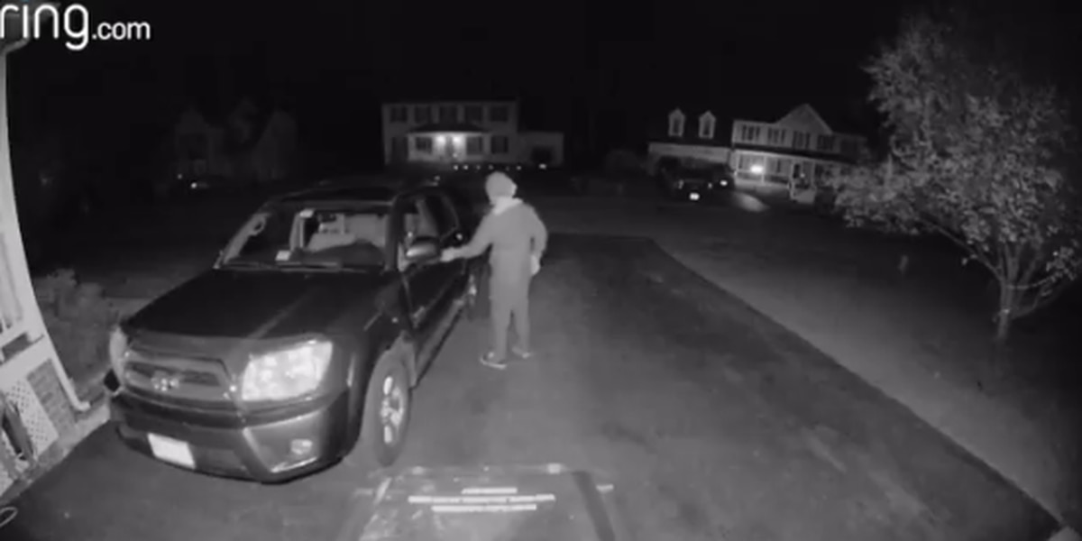 Police search for suspect checking for unlocked cars