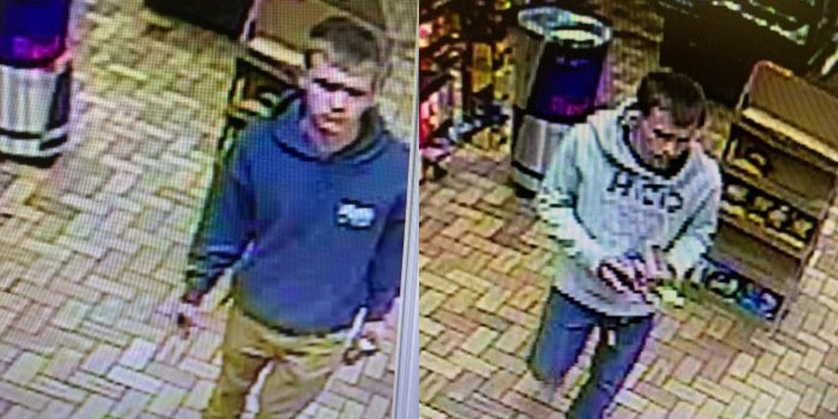 Campbell County deputies search for grand larceny suspect