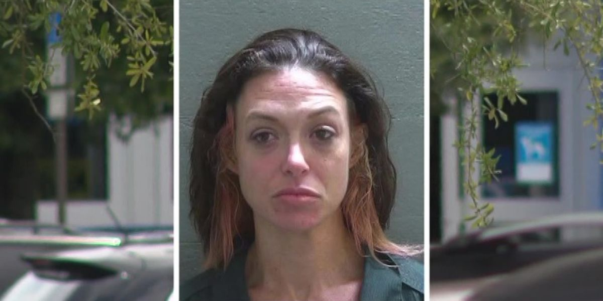 Florida woman charged with dog's hot car death