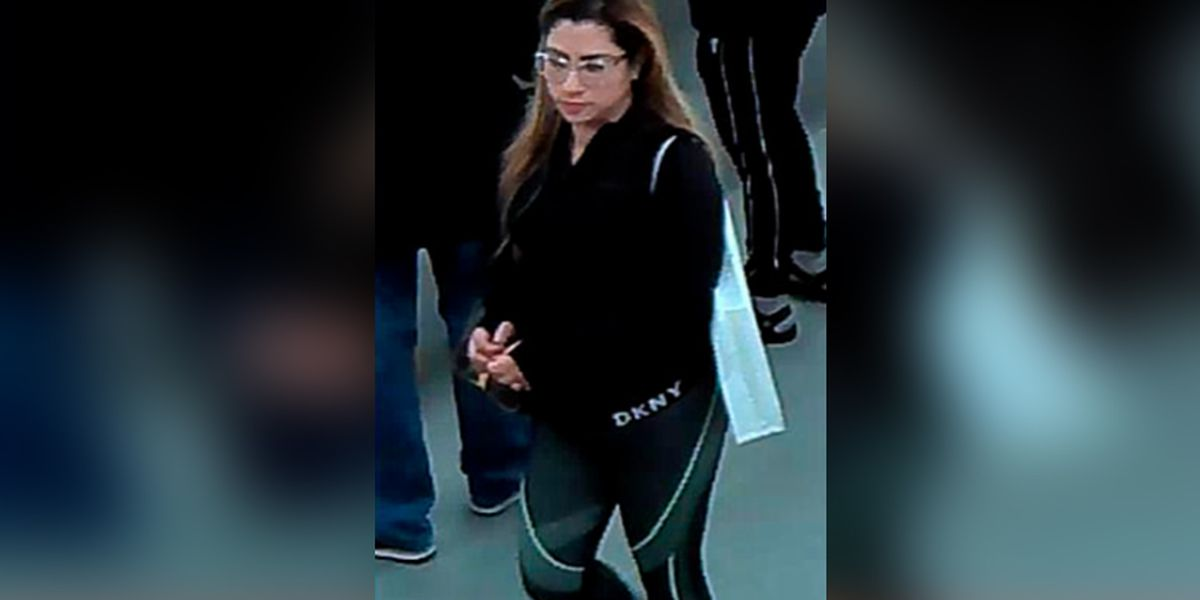 Police search for woman who used stolen credit card to buy thousands of dollars of merchandise