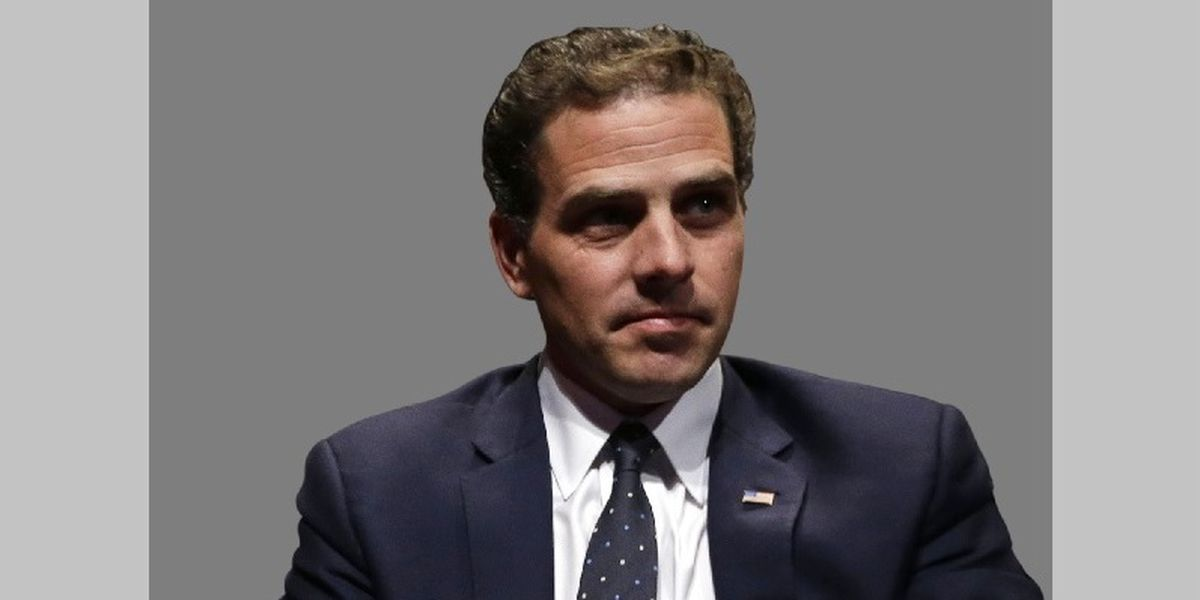Hunter Biden: You are the father, court records allege