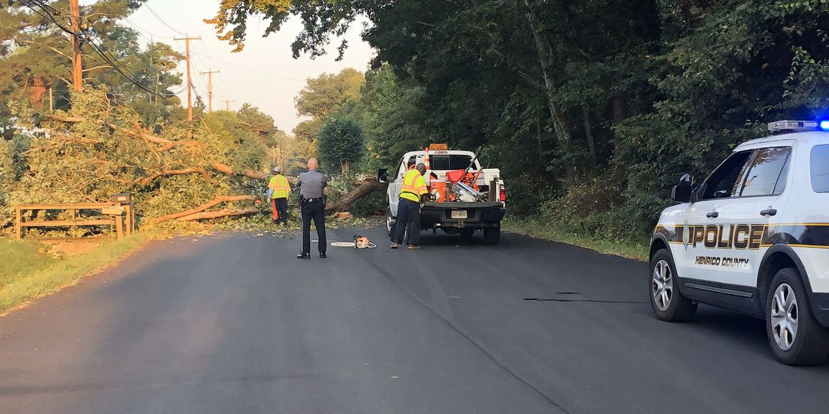 Downed tree closes portion of Henrico road