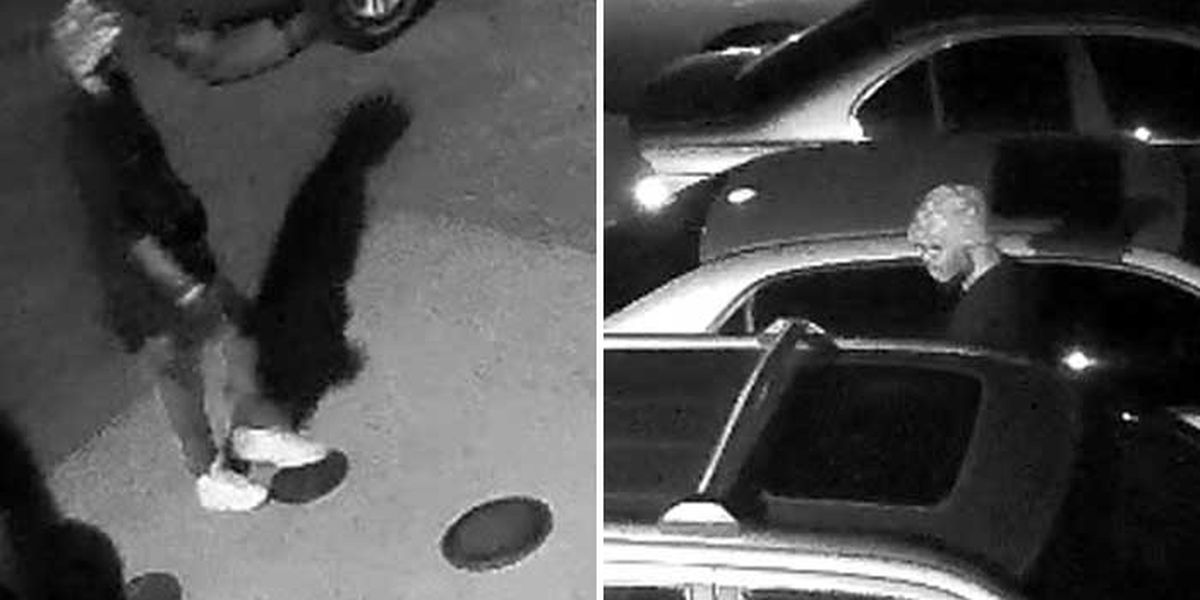2 wanted in vehicle break-ins in Chesterfield