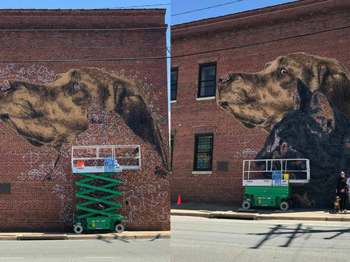 Richmond street artist completes Richmond SPCA mural