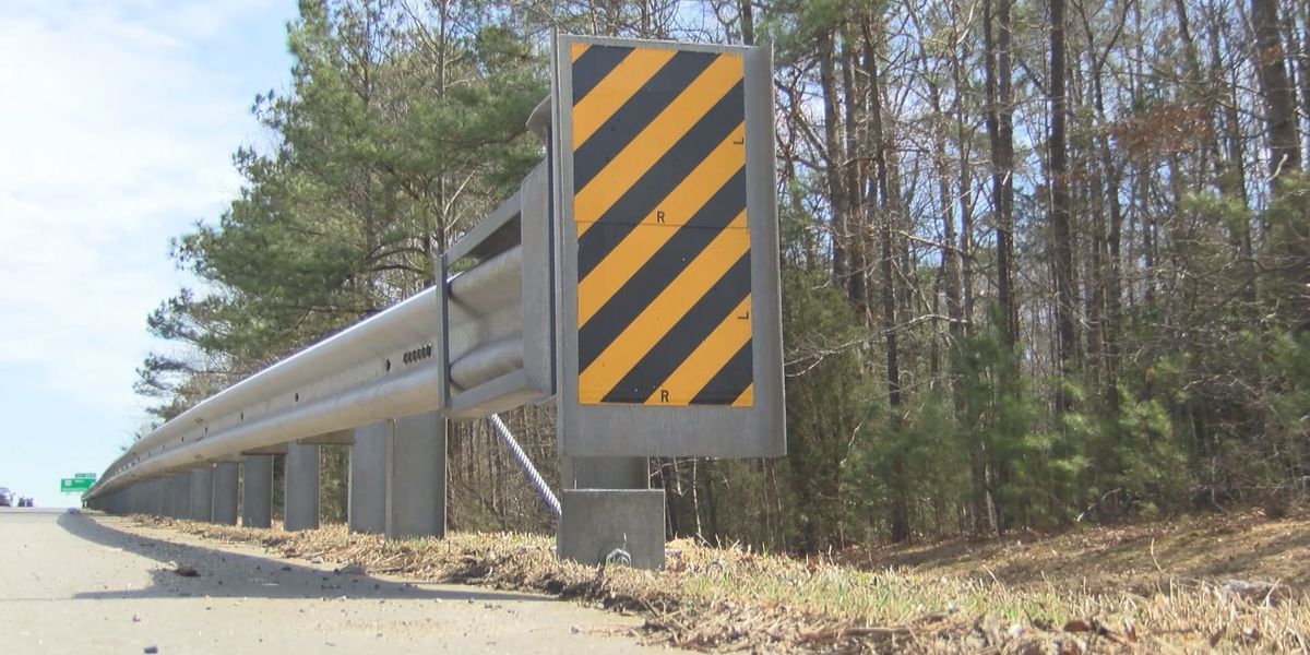 Lawsuit over controversial guardrails moving forward in Va.