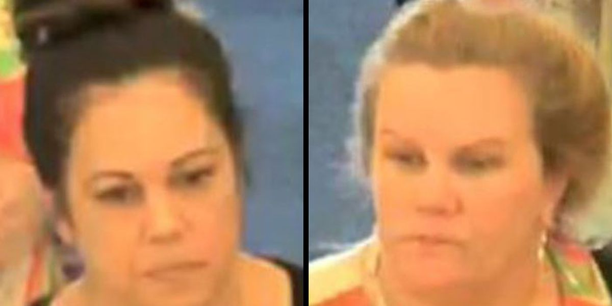 2 women suspected of shoplifting in Hanover