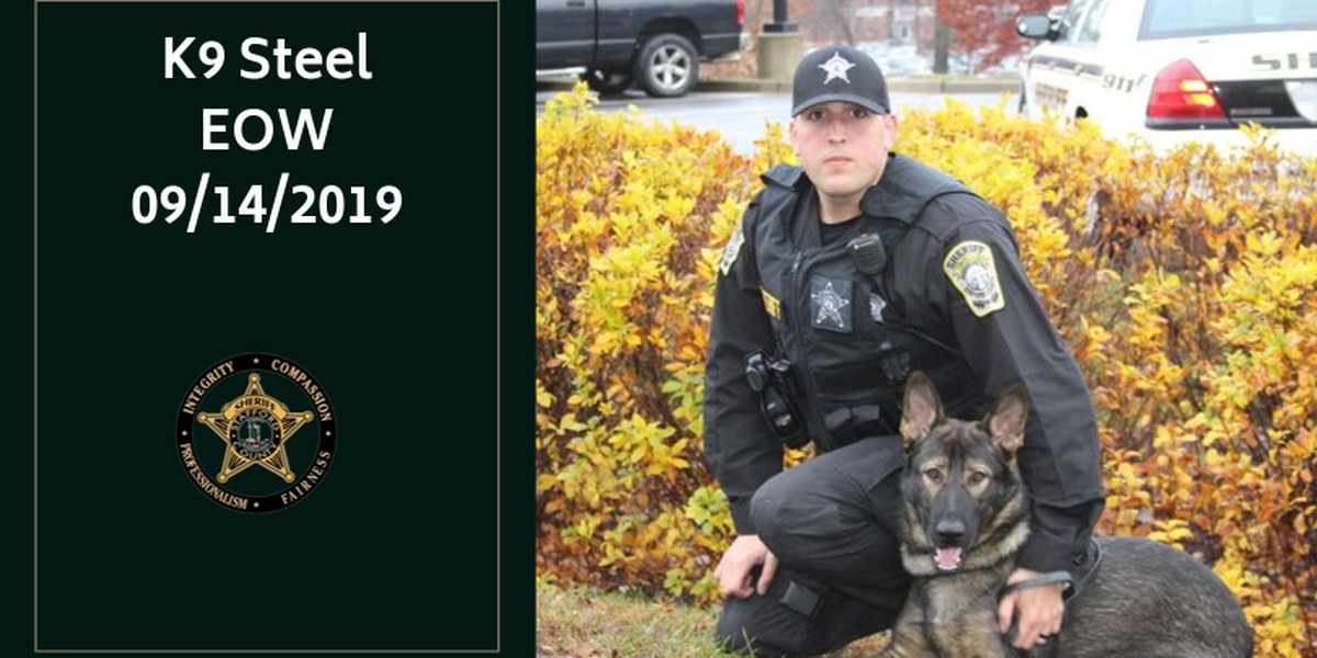 Stafford County K9 'Steel' dies